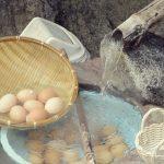 温泉卵ってなぜあんなに美味しいの?温泉卵をもっと知ろう!